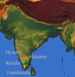 India Coffee Growing Regions